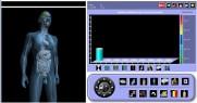 naturopatia software de diagnóstico para tratamentos naturais